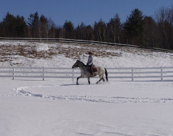 Horsebacking riding in the snow