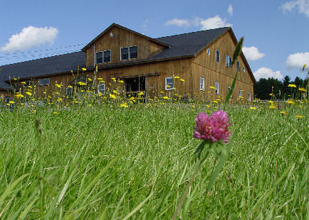 Thistle Ridge Barn